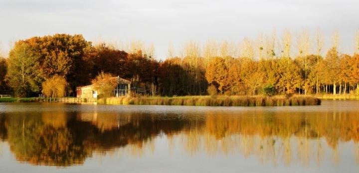Grange au bord de l'étang,  transformé en gîte