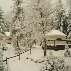 Les yourtes sous la neige