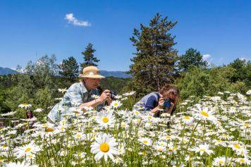 Le parc écologique de Terre Vivante et stage photo sur la macro nature