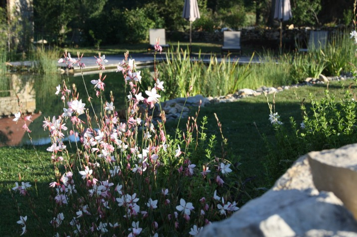 Fabienne aime entretenir son jardin selon la philosophie du Feng Shui