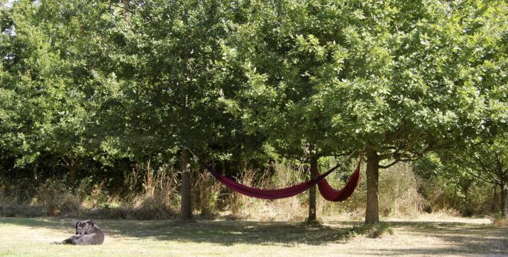 Le coin de la sieste sur la propriété