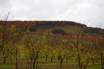 Vieville en automne