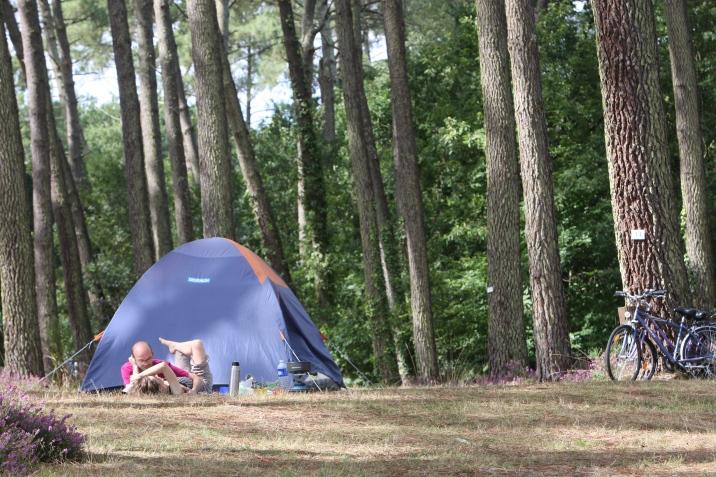Le calme des vacances en pleine forêt landaise
