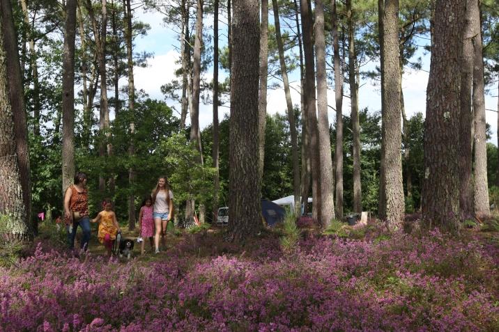 La faune et la flore du camping sont riches et variées