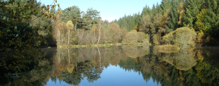 Découverte d'un plan d'eau dans la Cantal