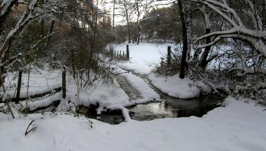 Petit sentier de randonnée dans le Cantal