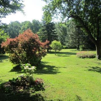 Le jardin, lieu idéal pour se ressourcer