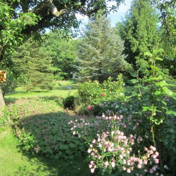 Un jardin de senteur