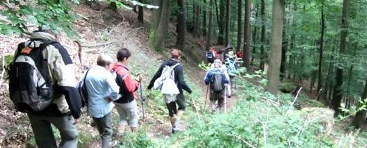 Groupe de randonneurs en Moselle