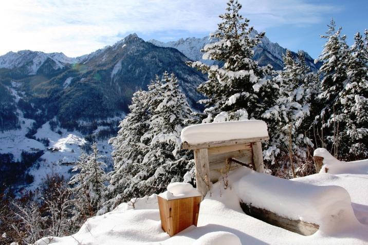 Vue sur les hauts sommets du Queyras depuis la maison de Pascale et Olivier