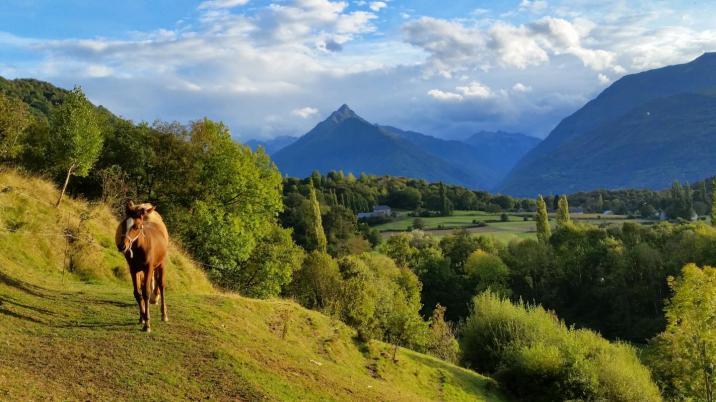 Carine et Philippe sont tombés amoureux des Hautes-Pyrénées