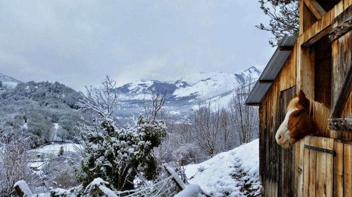 Vue sur la montagne enneigée